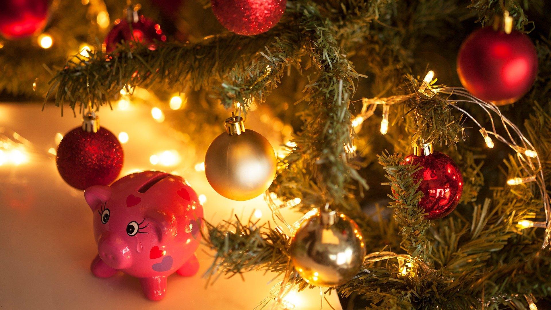 Новый 2019 год: что ждать от Желтой Земляной Свиньи