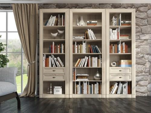 шкаф для книг для гостиной